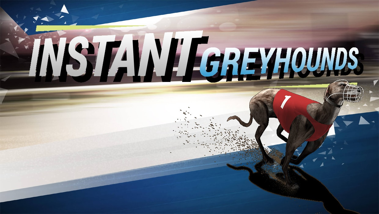 Instant Virtual Greyhounds