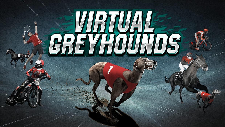 Virtual Racing - Greyhounds